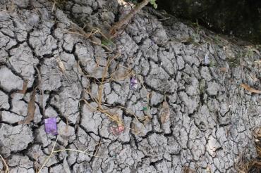 Tanah parit yang kering