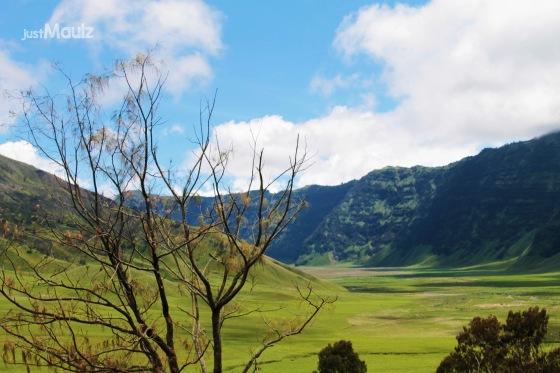 Pemandangan salah satu sudut saat meninggalkan penanjakan Gunung Bromo